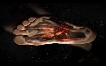 """Nike """"Biomorph"""" (CD/VFX Supervisor)"""