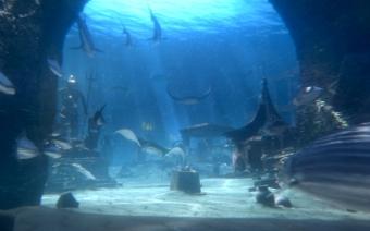 Atlantis Resorts Bahamas